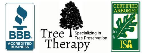TREE THERAPY